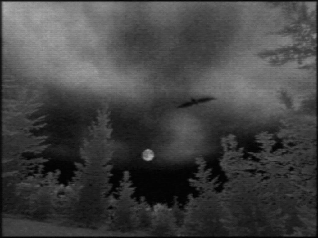 The Night Journey (2007) di Bill Viola